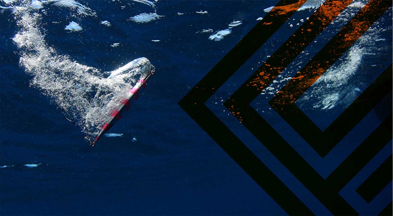 能够用实钓和职人的       技巧来证明的SFC的       铅饵能够把所有的       钓手导入到海底制霸                 慢卷线藏着无限的可能性。       海底制霸(SFC)不断的追求那个可能性,       在制作所有的目标都会反应的究极金属饵。       铅饵的开发超乎想像费时费力,       而且在本工厂全部都是手工制作,商品的精密程度,       外观的美感富于变化的同时也不允许别的公司超过。                   能够用实钓和职人的     技巧来证明的SFC的     铅饵能够把所有的     钓手导入到海底制霸