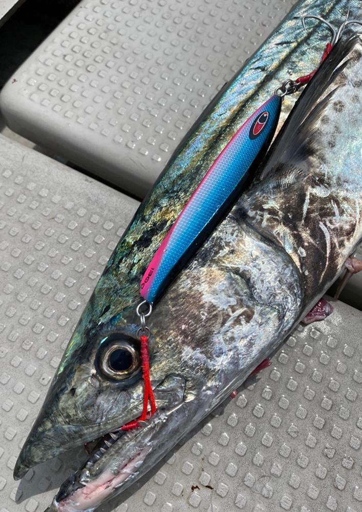 魚種を選ばない万能メタルジグ amu アム 受注開始